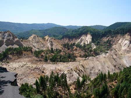 写真1:移動土塊の全景