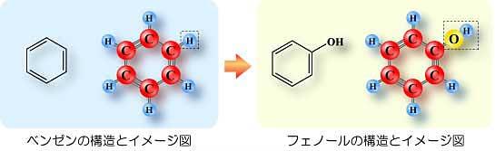 ベンゼンとフェノールの構造とイメージ図