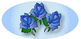 青いバラのイメージ