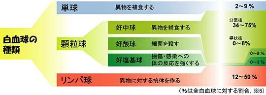 白血球の種類を示す図