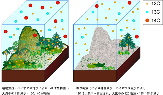 大気中に存在する炭素同位体のイメージ