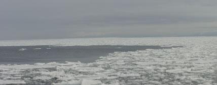 国後島から見る流氷