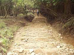 ひたすら続く木製の階段